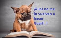 perro-lector
